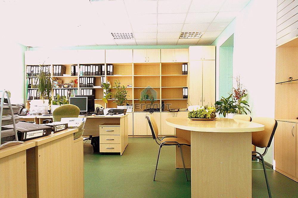 Продажа  помещения свободного назначения Аделя Кутуя 160, 1090 м²  (миниатюра №3)