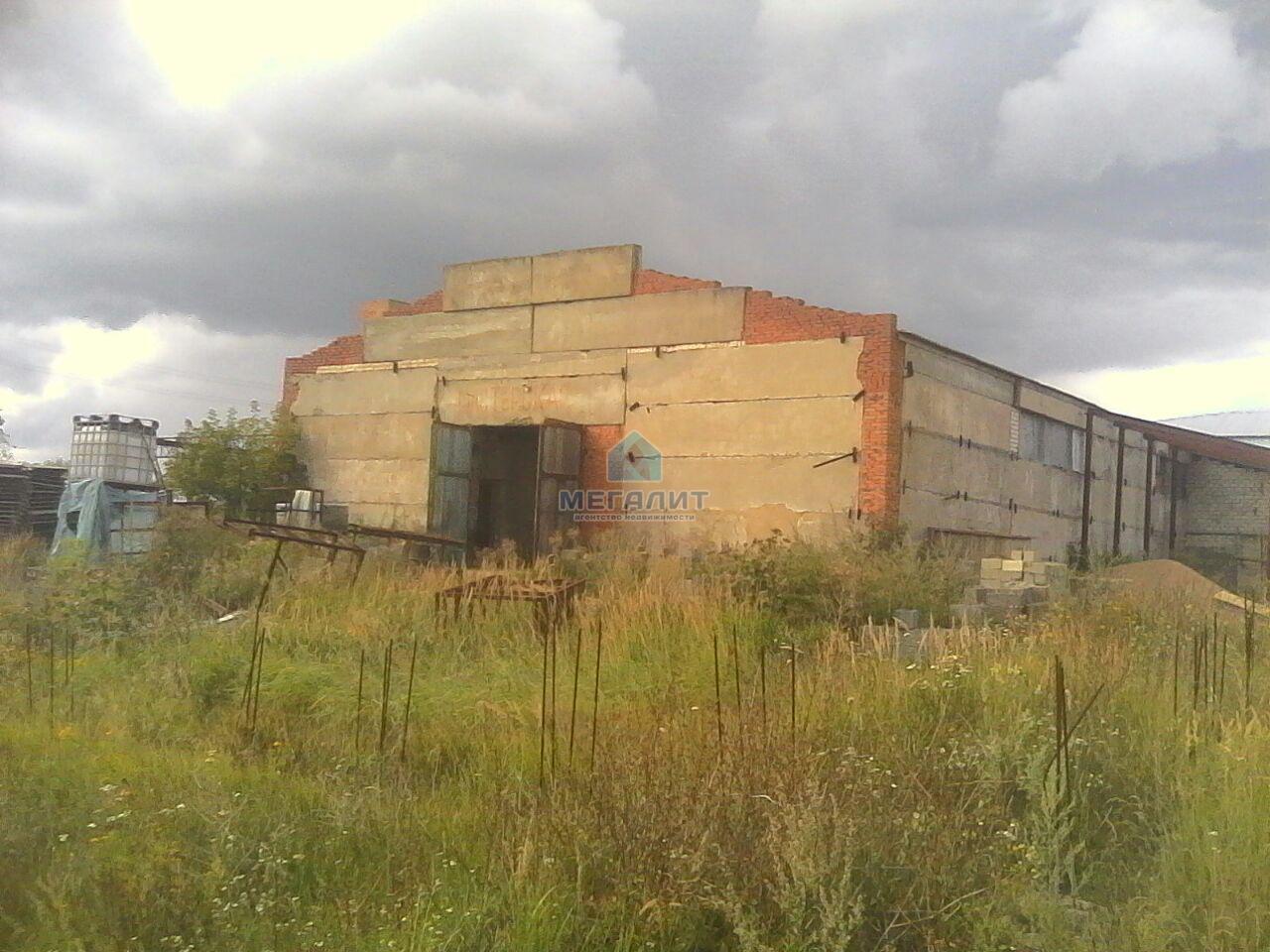 Продажа  помещения свободного назначения Осипова, 800 м² (миниатюра №15)