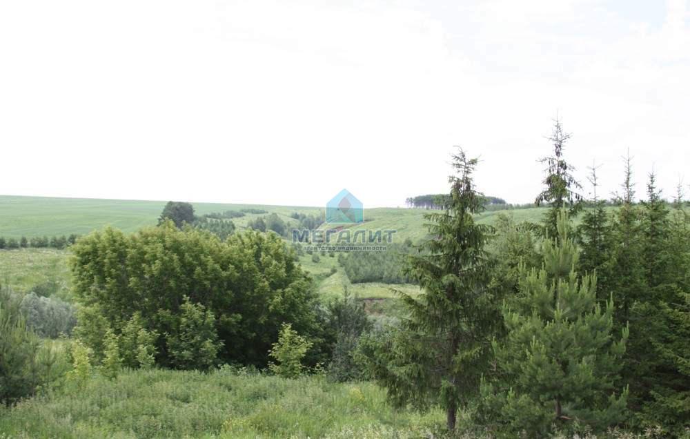 Продается земельный участок в п. Каракуль (миниатюра №5)