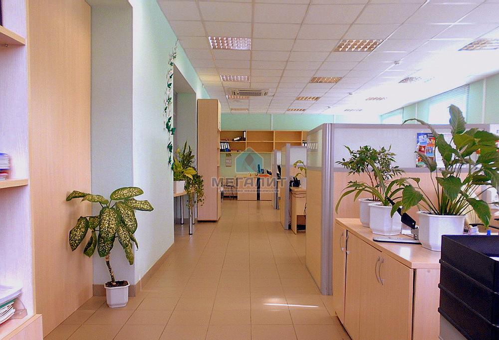 Продажа  помещения свободного назначения Аделя Кутуя 160, 1090 м²  (миниатюра №2)