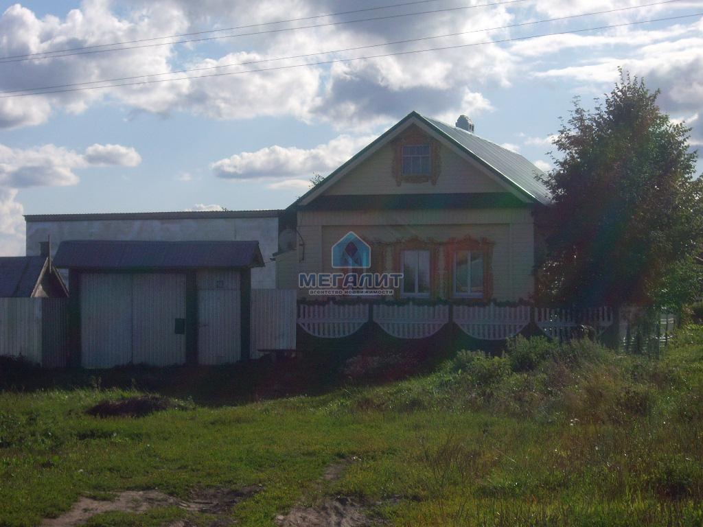 Продается земельный участок в п. Каракуль (миниатюра №16)