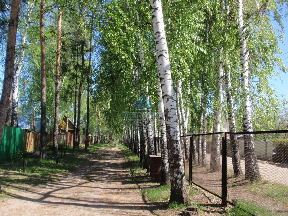 Продажа  дома Рябинушки 253, 0.0 м² (миниатюра №11)