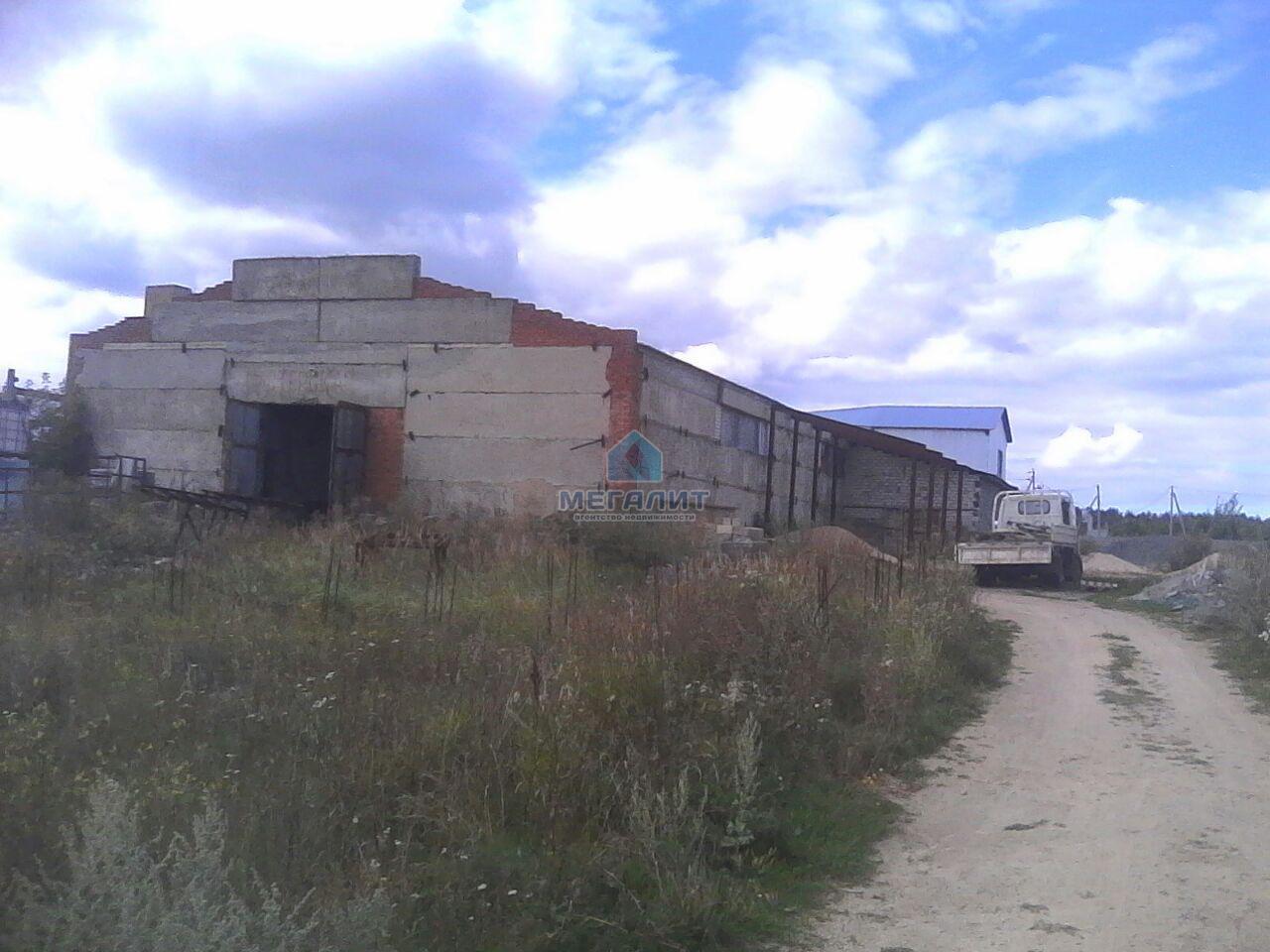 Продажа  склады, производства Осипова, 800 м²  (миниатюра №10)