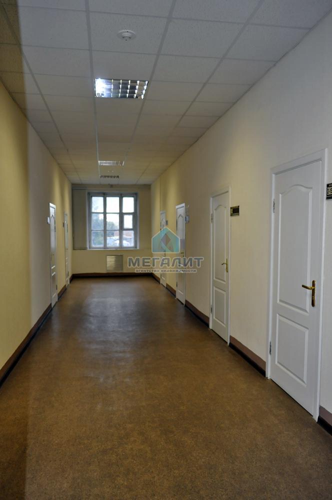 Продажа  помещения свободного назначения Рахимова 8 к19, 1754 м² (миниатюра №11)