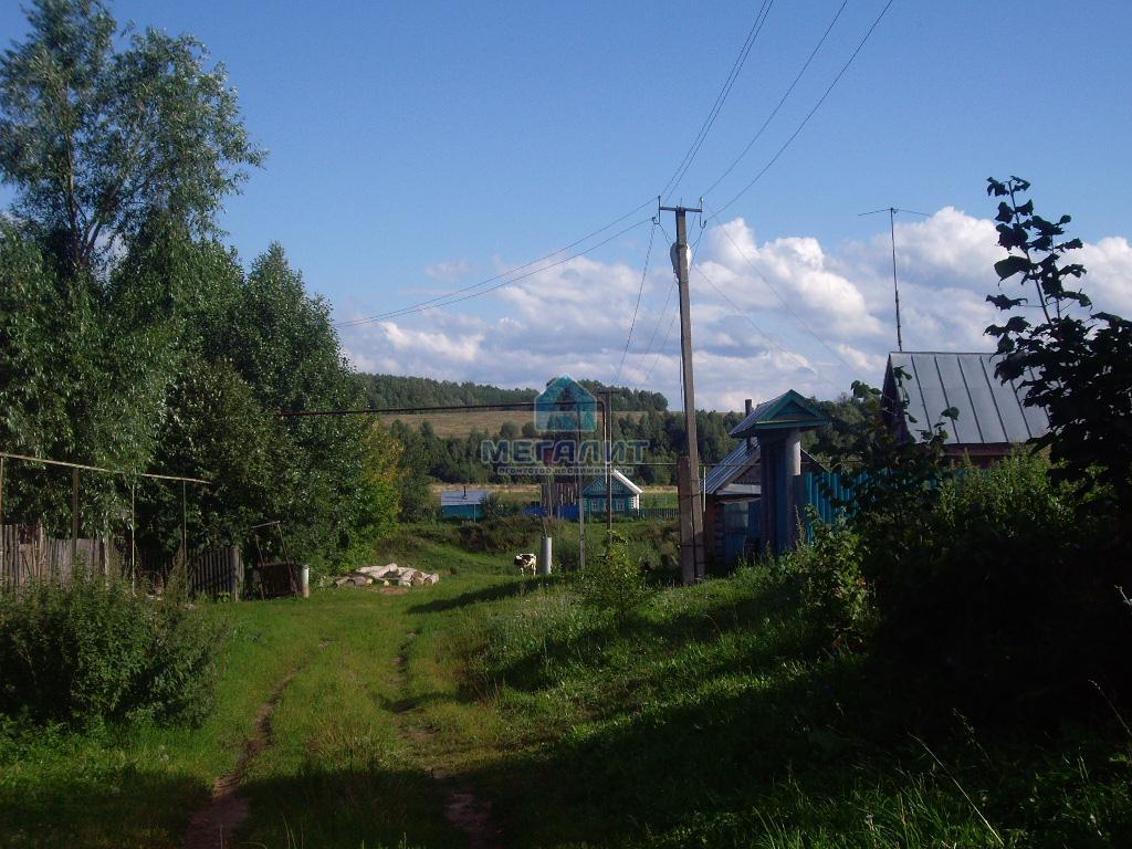 Продается земельный участок в п. Каракуль (миниатюра №1)