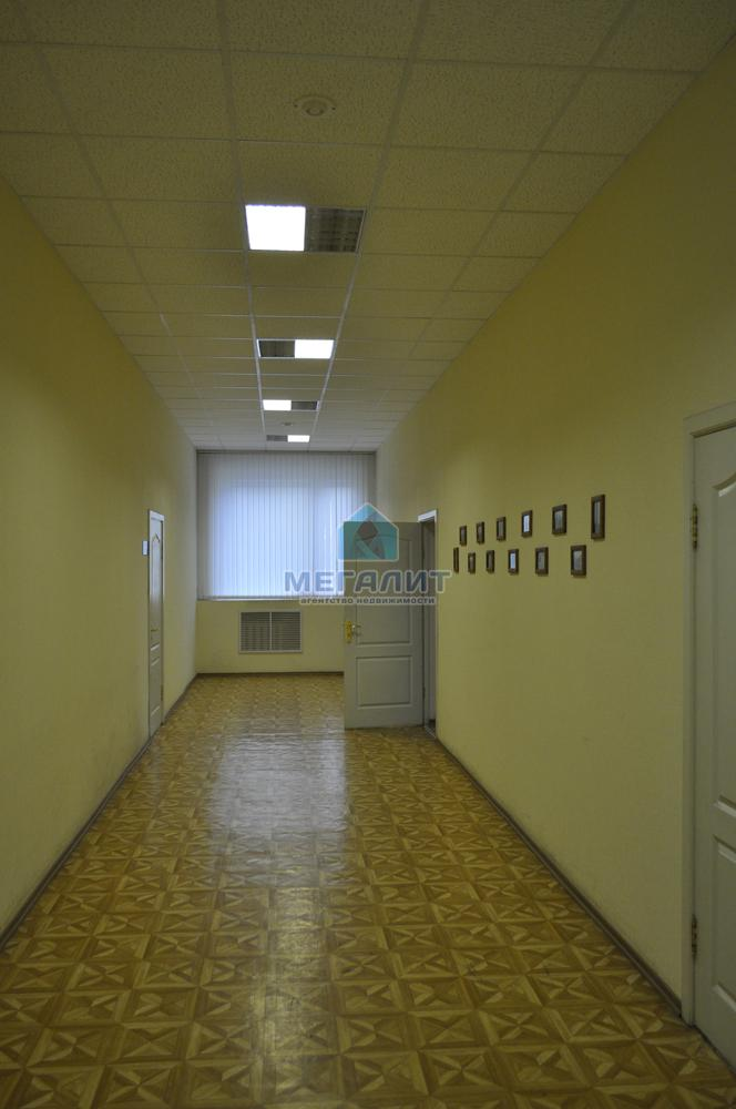 Продажа  помещения свободного назначения Рахимова 8 к19, 1754 м²  (миниатюра №8)